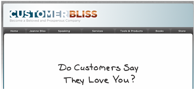 Customer Bliss - Become a Beloved and Prosperous Company